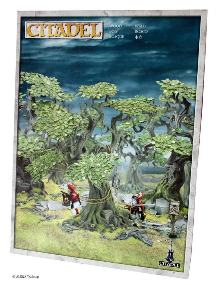Citadel-Wald-min